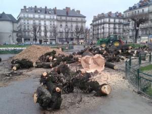 massacre à la tronçonneuse hier place Victor Hugo