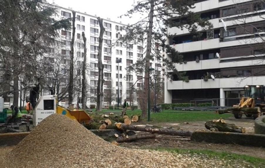 e piolle nous planterons 5000 arbres grenoble le changement. Black Bedroom Furniture Sets. Home Design Ideas