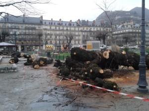 """Selon le """"DL"""" un grenoblois a interpellé HDZ: """" les arbres de Victor Hugo ont bien été abattus sans concertation?"""""""