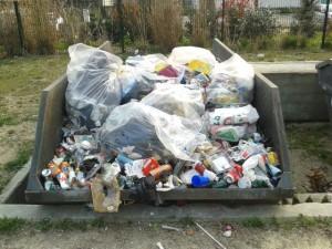 poubelles vertes paul mistral 1
