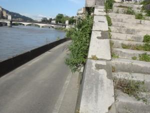 Quai Stéphane Jay rives de l'Isère 3 10-05-16
