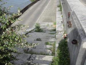 Quai Stéphane Jay rives de l'Isère 5 10-05-16