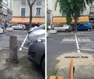 arbres-place-de-metz-facebook