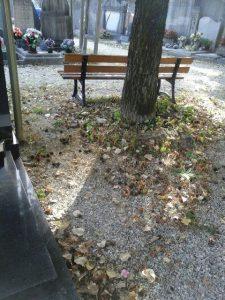 Les feuilles ne sont plus ramassées