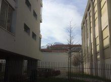 Les immeubles sont proches du gymnase Hoche et les habitants subissent les nuisance sonores: la municipalité n'y a pas pensé toute à sa densification