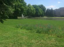 Depuis la municipalité Carignon il n'a pas été créé d'aussi grand parc que le parc Pompidou (5,5 hectares) dans le quartier Reyniès au centre ville