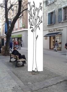 rue saint jacques 7