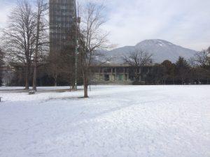 Les Verts ne savaient pas que janvier c'était l'hiver
